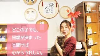 いやし亭 ほご猫茶屋 代表・小野田沙保里さん|新橋